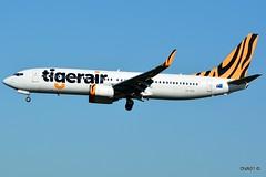 Tigerair Australia | B737-8FE(WL) | (34013/1573) | VH-VUB | SYD (u2274943) Tags: vhvub tigerairaustralia boeing b7378fewl 340131573 b737800 syd