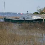 Fin d'après-midi à Jane de Boy, presqu'île du Cap Ferret, Bassin d'Arcachon, Gironde, Aquitaine, France. thumbnail