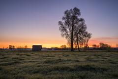 The tree and the hut (Sebo23) Tags: sonnenaufgang sunrise sonnenstrahlen morgenstimmung morninglight morgenlicht landscape landschaft licht light lichtstimmung nature naturaufnahme canoneosr canon16354l
