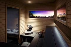 Saunas HARVIA (Grupo Bienestar) Tags: feeling solide harvia grupo bienestar sauna saunas