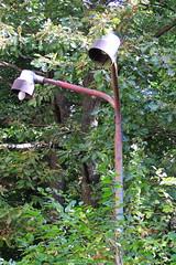 Bogensee_(CP) - 398 (sigkan) Tags: deutschland brandenburg bogensee lostplaces nikoncoolpixp520 vondetkanaccount