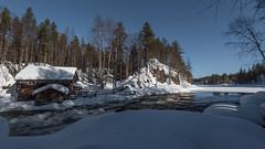 Finnland 2019 (Stefan Giese) Tags: nikon d750 finnland lappland oulanka nationalpark