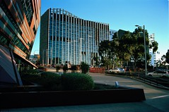 (harrybv319) Tags: hasselbladflextightx5 atkinslabadelaide portra160 adelaide southaustralia