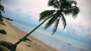 Rio Grande do Norte - Praia de Maracajau