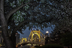 The Clemente Bridge (dxd379) Tags: pittsburgh pa pennsylvania nikon d7100 bridge clemente 6thstreetbridge allegheny river tree longexposure