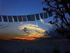 Praying in the evening !! (Lopamudra !) Tags: lopamudra lopamudrabarman lopa landscape darjeeling himalaya himalayas prayerflags prayer india kalimpong evening dusk twilight sunlight sundown sunset nightfall colour color colours colourful cold silhouette tree clouds cloud sky skyscape beauty beautiful picturesque westbengal