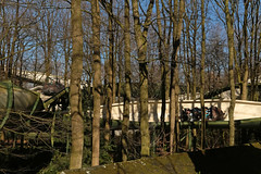 Bob - Efteling (Netherlands) (Meteorry) Tags: europe nederland netherlands holland paysbas noordbrabant brabant kaatsheuvel loonopzand deefteling efteling themepark parcdattractions fun happy park parc anderrijk rollercoaster bob bobslegh intaminag tonvandeven forest woods trees arbres bobbaan swissbob giovanola february 2019 meteorry