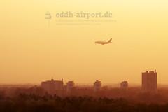A6-EUT (timo.soyke) Tags: germanwings icelandair flybe eurowings emirates rossja airbus boeing learjet bombardier a319 a320 a380 dash8 daknp 258 tffio b757 b757200 gjedp daewi a6euw a6eut vqbba ham eddh hamburg hamburgairport norderstedt heroldcenter garstedt sunset landung landing flugzeug aircraft plane