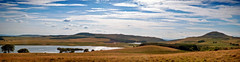 The Rolling Plains of Fife (MartinAllison) Tags: scotland fife lomondhills landscape panorama wide sky grass tree west lomond falkland hill ballo reservoir scenery water cloud blue