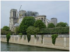 Notre Dame de Paris (abac077) Tags: notredamedeparis cathedrale paris 2019 monument incendie