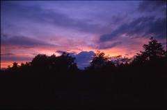 (✞bens▲n) Tags: contax g2 kodak e100g carl zeiss 45mm f2 film analogue slide positive sky evening trees clouds