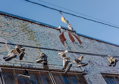 rainbow soles (pbo31) Tags: sanfrancisco city nikon d810 color april 2019 boury pbo31 spring missiondistrict art mural alley shoes powerline