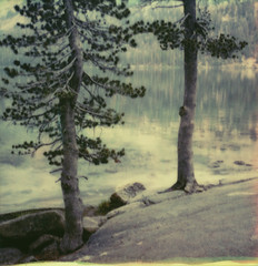 tenaya lake (lawatt) Tags: pine trees shore lake tenaya smoky yosemite film instant polaroid sx70 roidweek2019