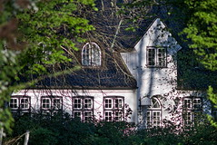 Abandoned hotel (iz.andre) Tags: lens vintage old forest maple leaf backlight ray light nature green prime sony alpha 7 mk2 a7ii bokeh magic colour gras water shadow itzehoe germany blue sky tree house home agriculture building rural mc rokkor 300m 145 f45