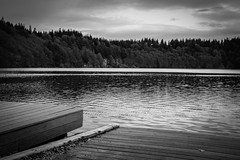 Lac Pavin (David-Charles Arrivé1) Tags: bw auvergne nb acros x100f