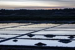 Coucher de soleil sur les marais salants (Lucille-bs) Tags: europe paysdeloire loireatlantique guérande maraissalants coucherdesoleil sel saillé graphique