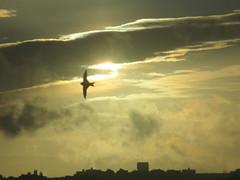 Twenty Four (mariasuzel) Tags: ms portugal sky céu sunset envelhecer bird ave 24 2019