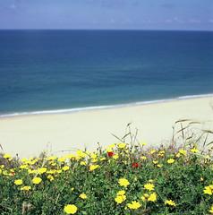 Ashkelon (erik.drost) Tags: ashkelon israel hasselblad500cm planart2880 zeissplanar8028 fujivelvia100 mediteranean