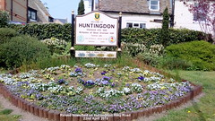 Raised flowerbed on Huntingdon Ring Road 22nd April 2019 (D@viD_2.011) Tags: raised flowerbed huntingdon ring road 22nd april 2019