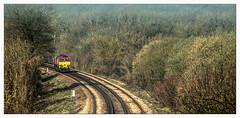 One in the Bush (Jim the Joker) Tags: 66001 class66 generalmotors dbc dbcargo 6m45 lightengine hollingbourne kent railway train 0m45
