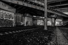 0m2_DSC9959 (dmitryzhkov) Tags: urban life human social public photojournalism street dmitryryzhkov moscow russia streetphotography people bw blackandwhite monochrome everyday candid stranger