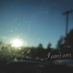 day 114 (Randomographer) Tags: project365 glass window words typw icanteven type sun car windshield 11 365 2019
