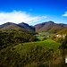 Elcito Landscape #2