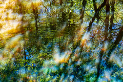 Color and Light (J McCallister) Tags: reflecting reflection water