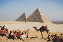 Egypt-35