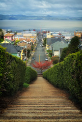 Down.......Town (Ian Sane) Tags: ian sane images downtown astoria oregon columbia river 11thstreet jerome irving landscape street photography thegoonies perspective wishilivedhere tree spring chickensteps canon eos 5ds r camera ef1740mm f4l usm lens