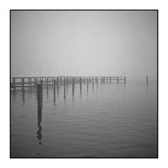 Chincoteague VA (Sergei Prischep) Tags: chincoteague voigtländersuperb1934 f35 skopar fuji neopan acros100 d76 6x6 120 film