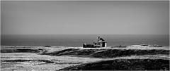 Dagverðará (niggyl (well behind)) Tags: nikcollection colorefexpro4 colorefexpro water ripples mountain seascape sea coastal ocean rocks foreshore coastline blackandwhite bw monochrome monochromatic bnw bnwseascape silverefexpro silverefexpro2 breathtakinglandscapes landscape iceland ísland inspiredbyiceland icelandiclandscape fujinon snæfellsnes snæfellsnesvegur route54 kerling lavabeach fujifilm fujifilmxpro2 fujixpro2 xpro2 fujinonxf55200 fujixf55200r fujinonxf55200f3548rlmois xf55200mmf3548 xf55200f3548 xf55200r xf55200 snæfellsnespeninsula dagverðará abandoned ruin farm whitecaps highkey highkeyblackandwhite contrejour