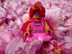 She likes pink (sander_sloots) Tags: pink power batgirl lego blossom leaves cherry bloesem blaadjes minifig girl roze lumix panasonic dctz90 minifiguur batman series