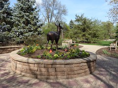 Lombard, IL, Lilacia Park, Deer Sculpture (Mary Warren 13.6+ Million Views) Tags: lombardil lilaciapark nature spring flora plants leaves foliage green blooms blossoms flowers metal bronze art sculpture deer garden park coth5