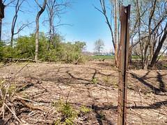 Carmack Woods Wetlands (dankeck) Tags: metal pole parkinglot thinned thinning osu ohio ohiostate theohiostateuniversity columbus centralohio franklincounty wetland wetlands urbanforest