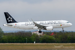 "CS-TNP | TAP - Air Portugal (""Star Alliance"" livery) 