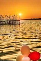 Sunrise with five balloons (Steppenwolf33) Tags: lake köpenick müggelsee balloon water sun steppenwolf33 ngc sunrise