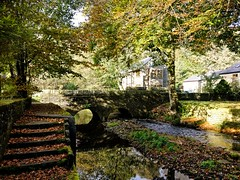 Enchanting little bridge. (peterileypics) Tags: stream countryside old bridge leaves trees sunshine