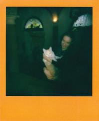 Me & Kimi (igorigor88) Tags: gatto cat kitty red orange pink rosso arancione rosa casa home house me myself people portrait ritratto blonde blondie light luce ombre shadows scuro dark braccio hug love animale animal vintage old eighties anni80 polaroid analog analogico film pellicola rullino impossibleproject impossible project parma emiliaromagna emilia romagna northernitaly northitaly north italy italia nord norditalia