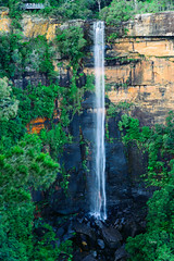 Fitzroy Falls, Australia (tonyg1494) Tags: photography flickr tonygong waterfall trees people lookout nikon d750 nsw australia mountains fitzroy falls fitzroyfalls national outside water green nature tree leaves colours longexposure