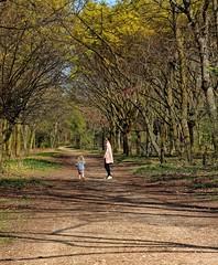 Paris / Bois de Boulogne / Mother and child walk (Pantchoa) Tags: paris france boisdeboulogne forêt nature arbres allée promenade enfant mère chemin printemps parc