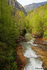 Running away (Ivan Gualtieri) Tags: stream torrente brembo fiume river lenna orobie valle brembana valley alps alpi