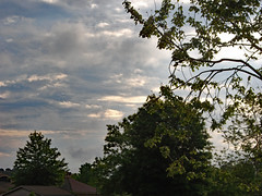 Morning Clouds. (dccradio) Tags: lumberton nc northcarolina robesoncounty outdoor outdoors outside nature natural tree trees greenery foliage leaf leaves plant branch treebranch branches treebranches treelimb treelimbs sky clouds fuji finepix jv100 april spring springtime friday fridaymorning morning goodmorning