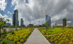 Biblioteca Degli Alberi park (Alessio Mesiano) Tags: italy milano alessiomesiano architecture boscoverticale buildings city clouds cloudy colorful daylight green landscape lombardia modern nature new outdoor park plants quartiereisola sky skyline skyscraper skyscrapers sunny tower trees unicredit milan provinceofmilan