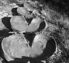 organic (Rosmarie Voegtli) Tags: dornach heart form blackwhite bw fountain playground water flowing