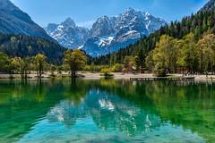 Lago Jasna (marypink) Tags: lagojasna jasnajezero kranjskagora slovenia alpigiulie lake reflections riflessi alberi mountains trees spring nikond7200 2470mmf28