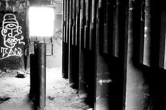 (pollution lumière) Tags: leica leicaflex sl2 summicronr50mm kodaktrix400 abandoned blackwhitefilm blackwhite bwfp blancoynegro blancetnoir blackandwhitefilm richmond belleisle alteseinauge