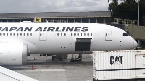 JAL Boeing 787 underfloor hatch open DSC_0613 (1)