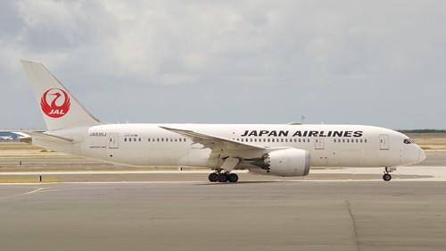 JAL Boeing 787 -8 JA835J DCS_0606 (1)