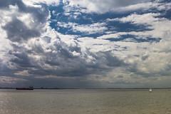 Waarde (Omroep Zeeland) Tags: westerschelde wolkenlucht waarde scheepvaart zeiljacht regenwolken regenbui